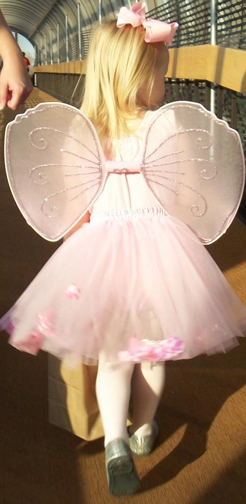 Syd wings