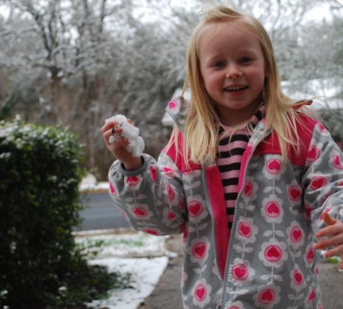 Snowball Syd 1