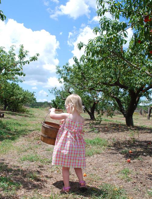 Peaches 4