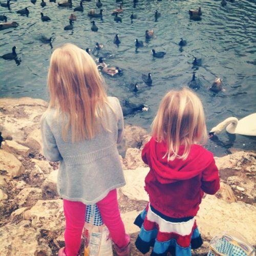 Girls Feed Birds