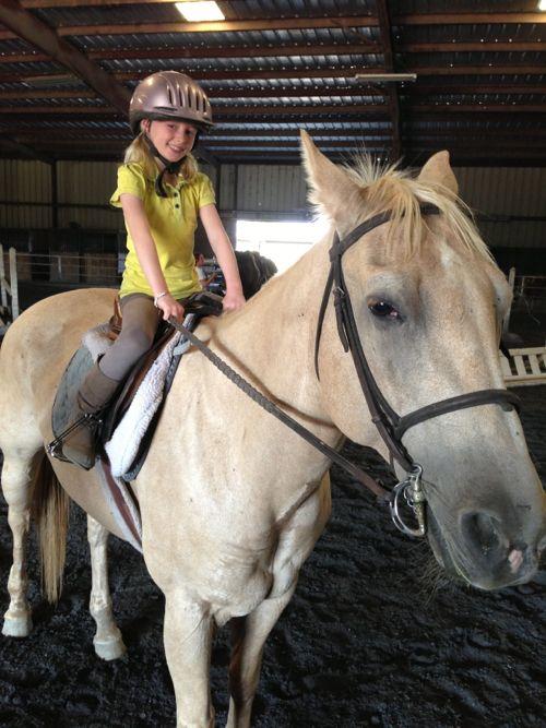 Horse13f